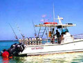Rincon, Puerto Rico, diving, snorkeling, scuba