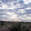 Beim Nossob Camp, Kgalagadi Transfrontier Park