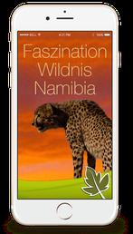 Faszination Wildnis Namibia Screen