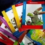 LIBROS DE TEXTO DEL ALUMNO PRIMARIA