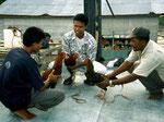 Wie in ganz Indonesien ist auch in den Kutai-Dörfern der Hahnenkampf sehr beliebt. Er ist zwar verboten, wird aber regelmäßig betrieben.