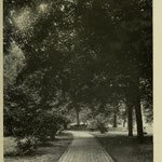 images of campus - winding path to Old Main