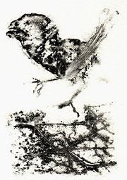 Birdy, 2002, Monotype by Amador Vallina