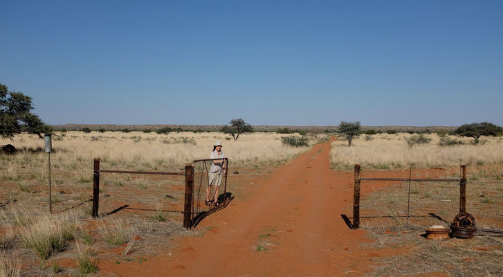 Durchs Farmtor zum Red Dune Camp, Kalahari Namibia