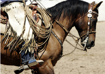 BUCKAROO GEAR & RANCH ROPING