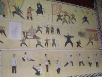 tai, chi, dao, chen, taijiquan, san miguel, taoismo, tao, marcial, clases, practicas, historia, estilos