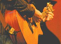 Cuerdas. Los tríos tradicionales se acompañan con instrumentos de cuerdas, en especial guitarras, punteras y marcantes.
