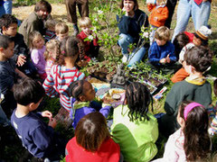 sunday children's program at green gulch farm