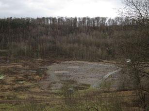 メッセル採掘場の画像 p1_15