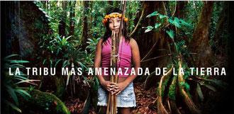 © Survival Internacional