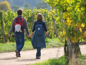 Viele Wirtschaftswege in der Region sind Teil eines deutsch-französischen Wanderwegs. Foto: Karin Willen
