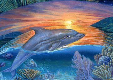Mandala Dolphin