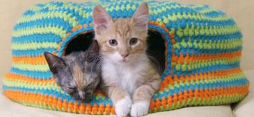 Cama para gatos tejida a crochet / Crochet cat bed (or nest!)
