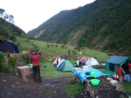 Camp à Totora