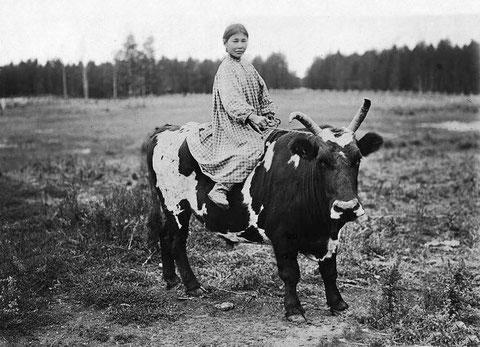 якутская девушка на быке