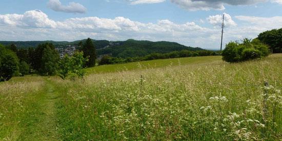Blick vom Blömkeberg in Richtung Bethel auf den Eggeweg
