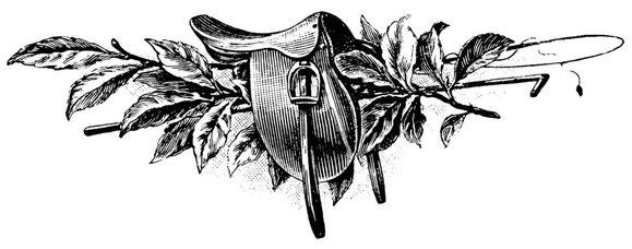2 iva inclusa for Selleria colombaia