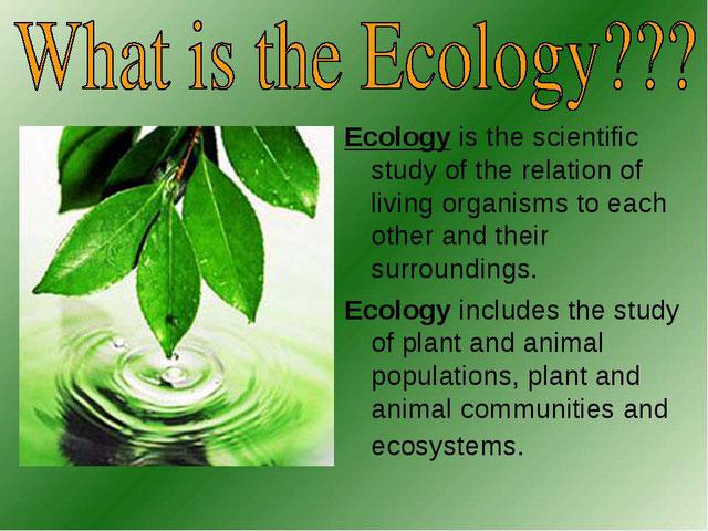 Защита окружающей среды (global problems of ecology)