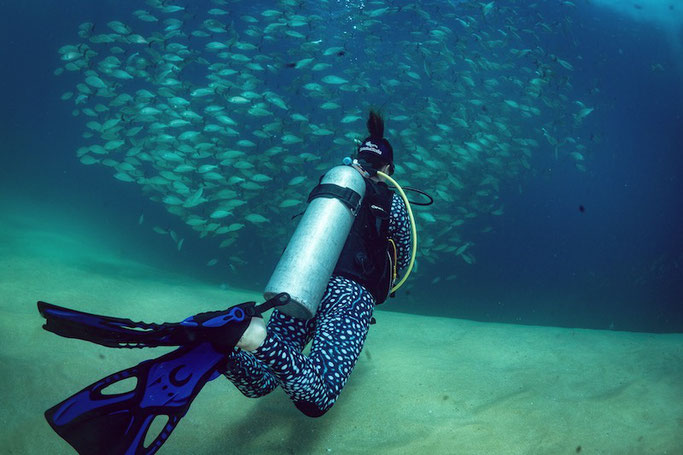 scuba diving in isle mujeres