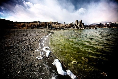 Un exemple de ce à quoi pouvait ressembler les océans primordiaux après l'apparition des premières algues. Les continents n'étaient pas encore colonisés. Source: Futurasciences.