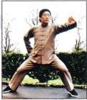 master, chen, xiao, wang, yin, yang, tai chi, chikung, taijiquan, clases, cxwta, san miguel