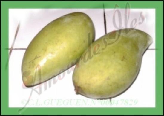 Mangues vertes très acidulés parfaites pour les hachards, pour ma part...