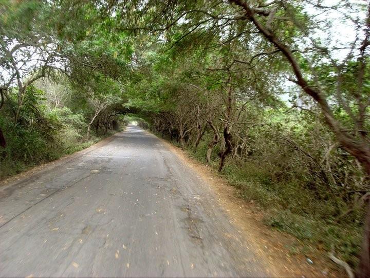 Vía Jipijapa - Puerto López y vía Manta - Puerto López.