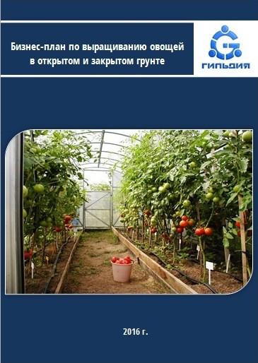 Выращивание овощей в закрытом грунте оквэд 25