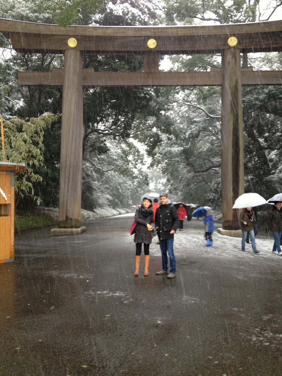 Next day there is a blizzard but undeterred, we head for the Meiji Shrine .. — at 明治神宮 (Meiji Shrine).