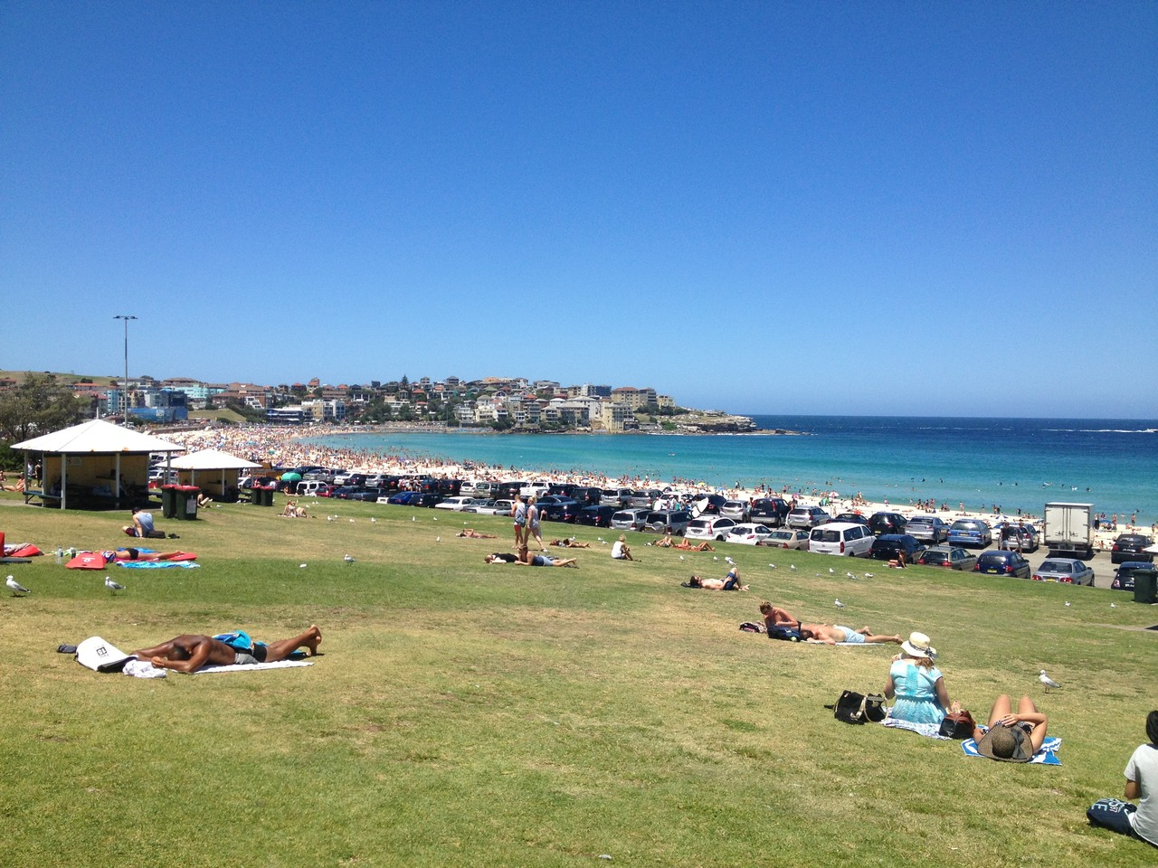 Next day managed to nip down to Bondi beach to have a look — at Bondi Beach.