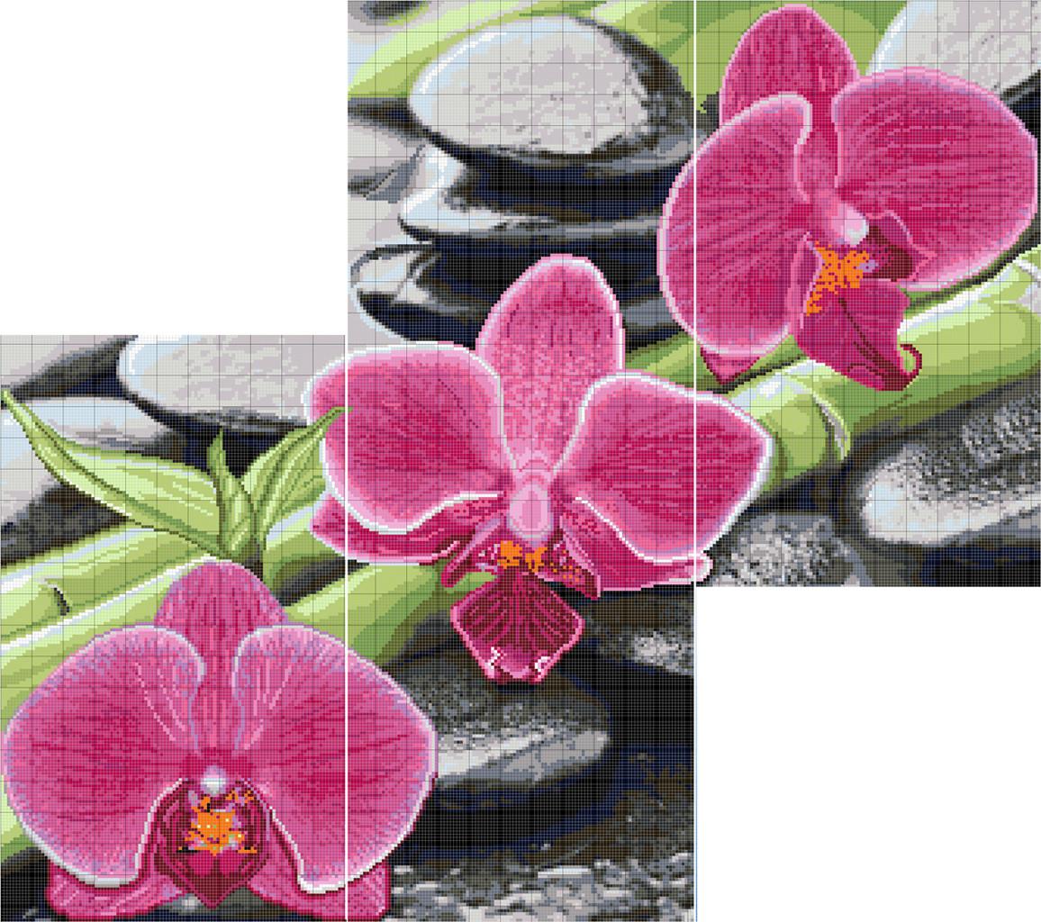 Схема вышивка бисер орхидея 917