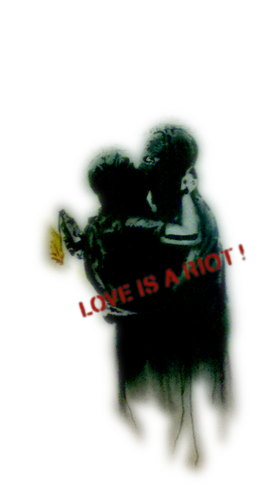 Love is a Riot
