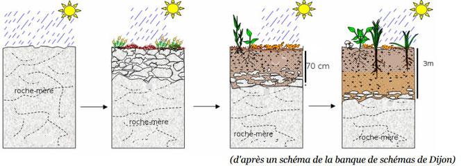 Berühmt Les sols : une ressource à protéger - Site de cours de collège et  PG04