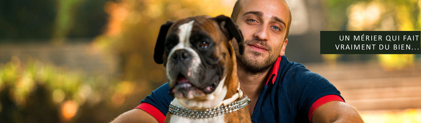FORMATION CANINE - Educateur Canin Comportementaliste