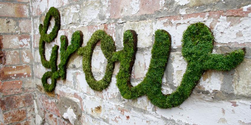Très Tutoriel : Le street art ecologique, graffiti en mousse - Slave 2.0 BP85