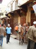 世界遺産になっている旧市街の中。車が通れないので、運搬は馬で。