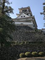 天守と本丸御殿の両方が現存する唯一の城、高知城。