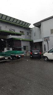 自社に雪が降っている
