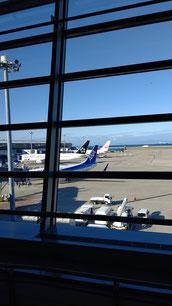 飛行機が離着陸するため飛行機が並んでいる