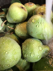 Handgepflückte Birnen im Wasserstrahl MichiLaden Michaela Kaida