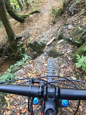 Tricky trails- Ahrtalstyle!