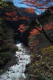 むかし道から見た多摩川