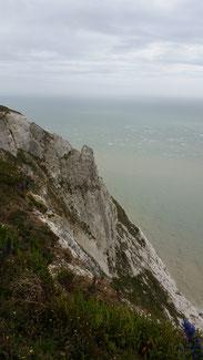 Auf dem Beachy Head gewinnt man die ersten Eindrücke der Steilküste...