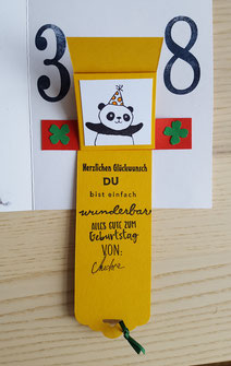#Wasserfallkarte # expolsionsboxen.de #stempelliese.com #Panda #Geburtstagskarte