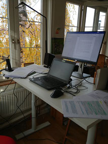 Autorin am Schreibtisch
