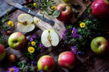 林檎のイメージ写真apples-2023401_1920