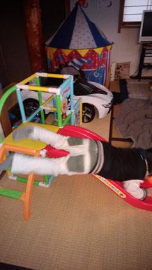 滑り台から落ちる子供の写真