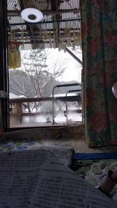 雪が降っている写真