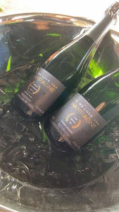 champagner - moet - don perignon - millesime - dosage zero - zero dosage - blanc de blanc - pinot noir - pinot meunier - chardonnay - brut -rose - champagner rose -premier cru - pierre & trémail - we love champagner