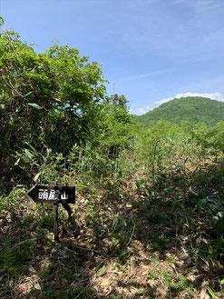 ▲蕨野の分岐。山頂は左へ